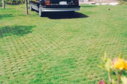 現場澆築植草地坪