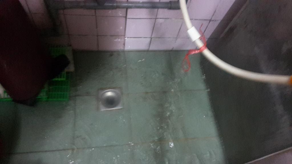林口區抽水肥馬桶不通水管包通