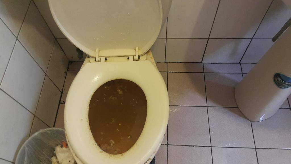 蘆竹區抽水肥馬桶不通水管包通