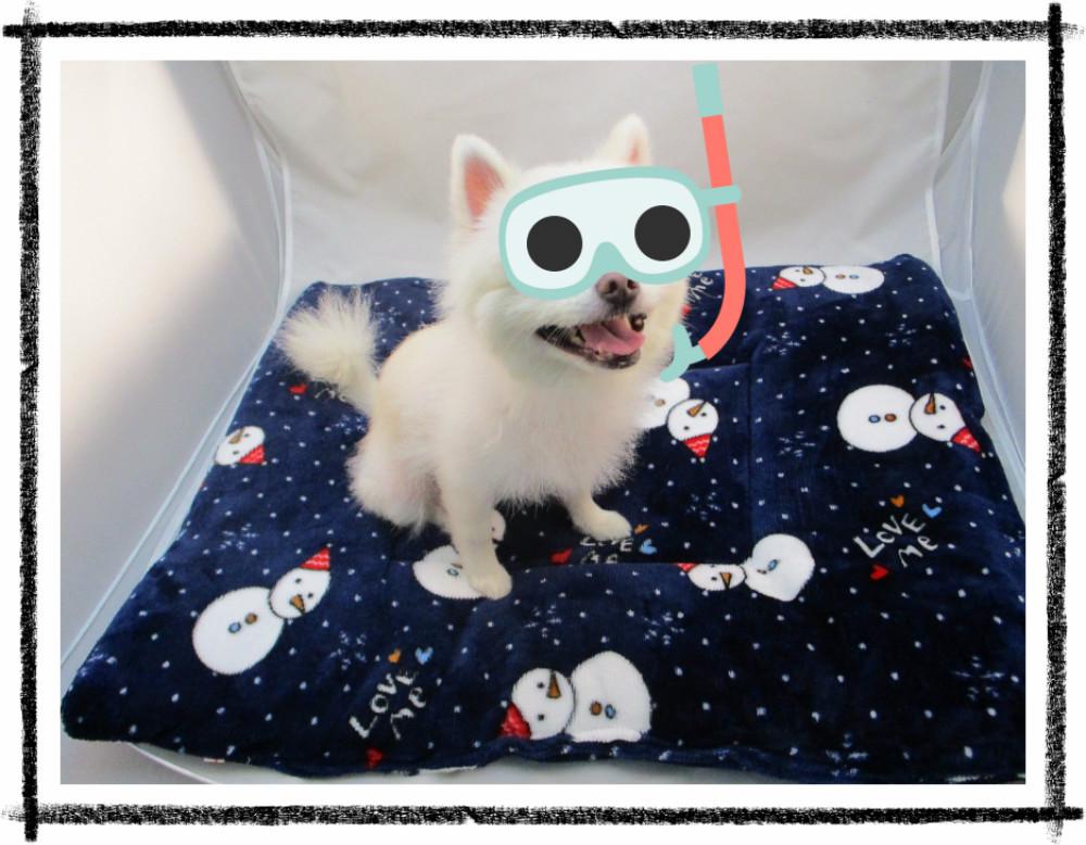 寵物床墊(大)