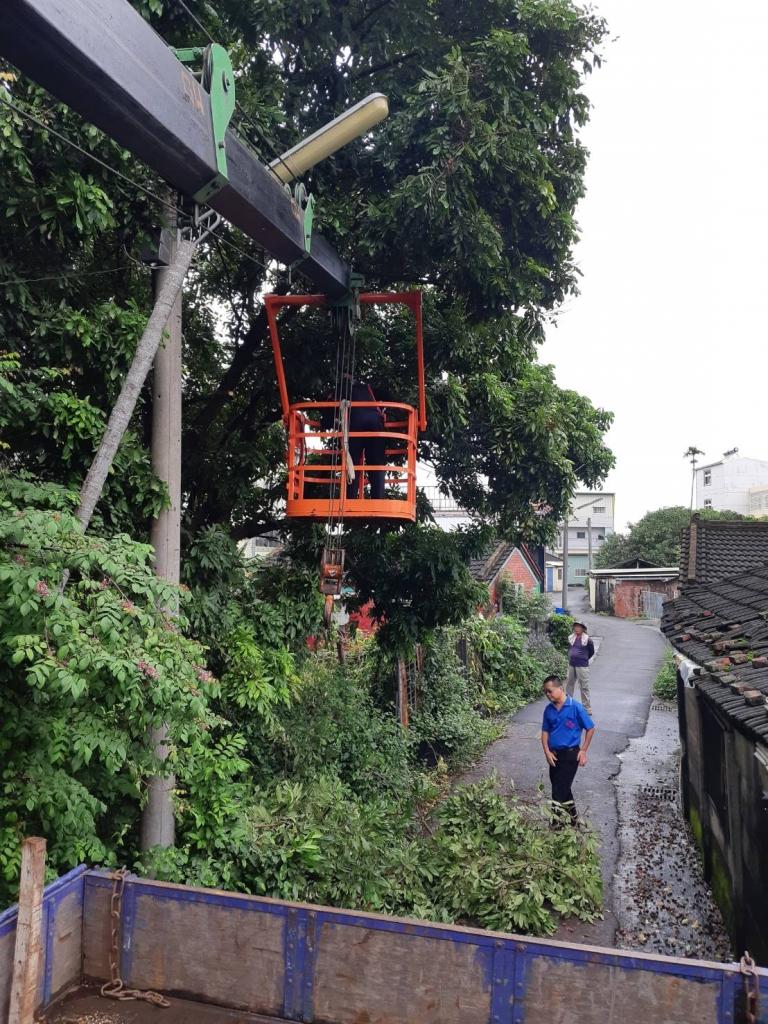 樹木修剪 台南