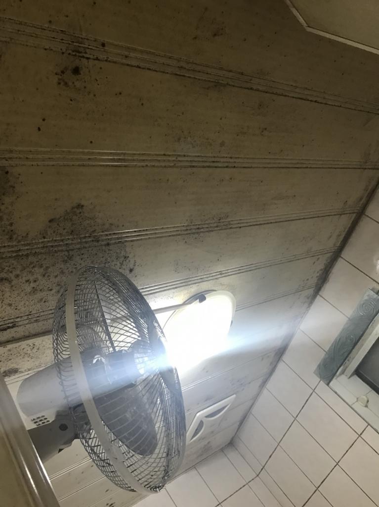 台南浴室塑膠天花板