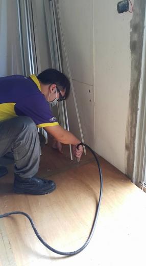 裝潢防蟲(白蟻)工程