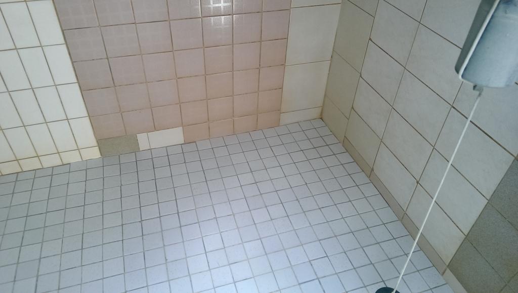台中外牆清洗|十大清潔社|台中大掃除|台中室內清潔|台中交屋清潔|台中大樓清潔|台中水塔清洗