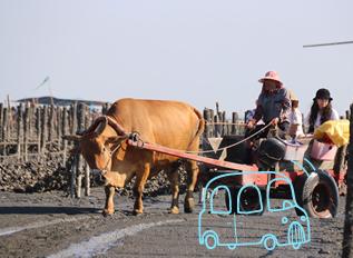 沁山水色‧傳藝風情 幸福家庭4日遊
