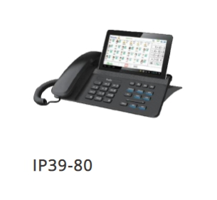 IP39-80