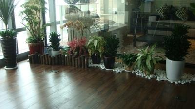 展示中心_PVC環保鎖扣地板