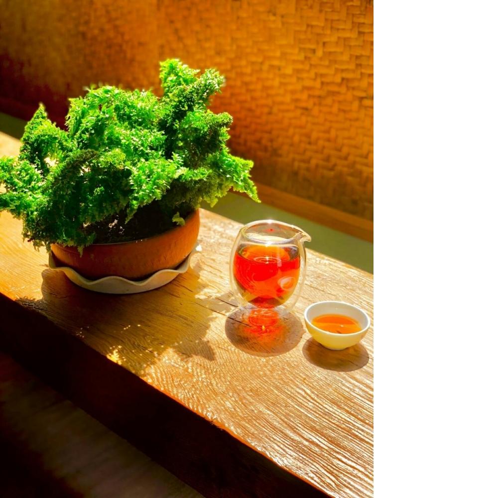 台灣阿里山條狀紅茶