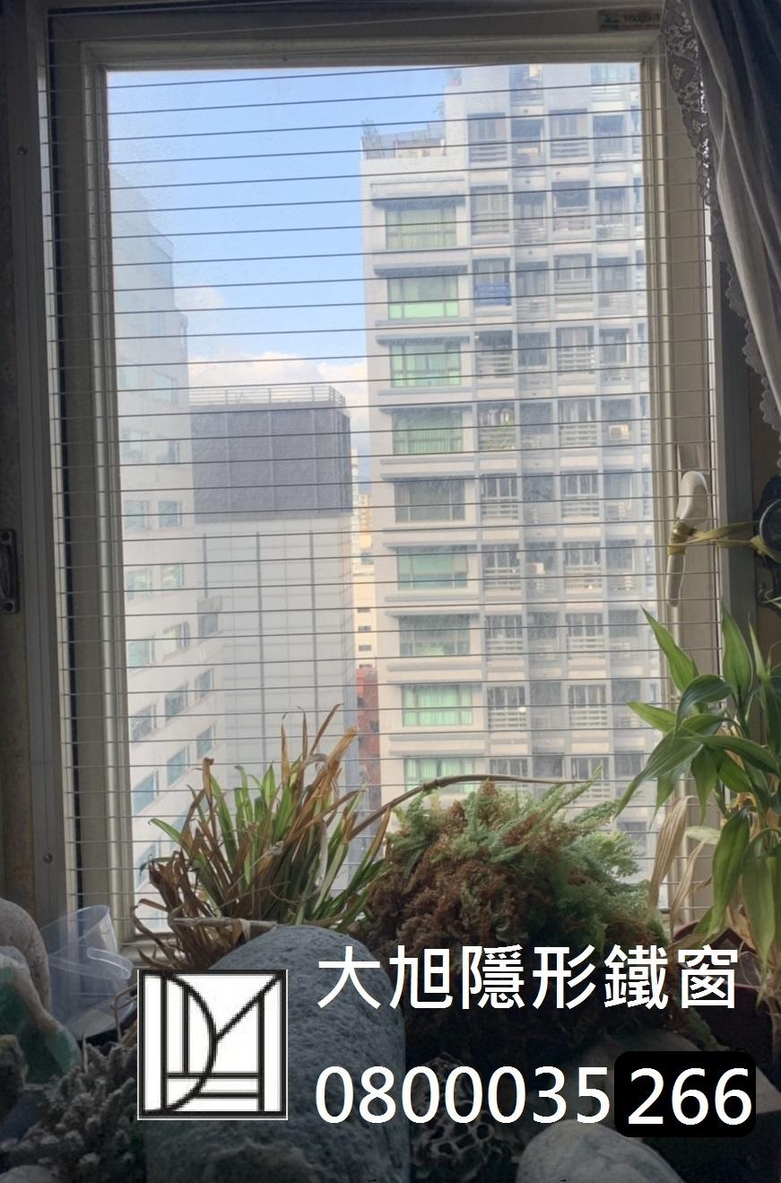 看見毛孩狂咬手指,不是香港腳,是太潮濕了你知道嗎?大旭隱形鐵窗寵物防墜防護網