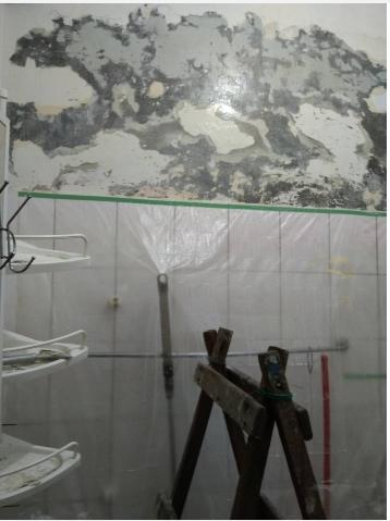 台中壁癌防治