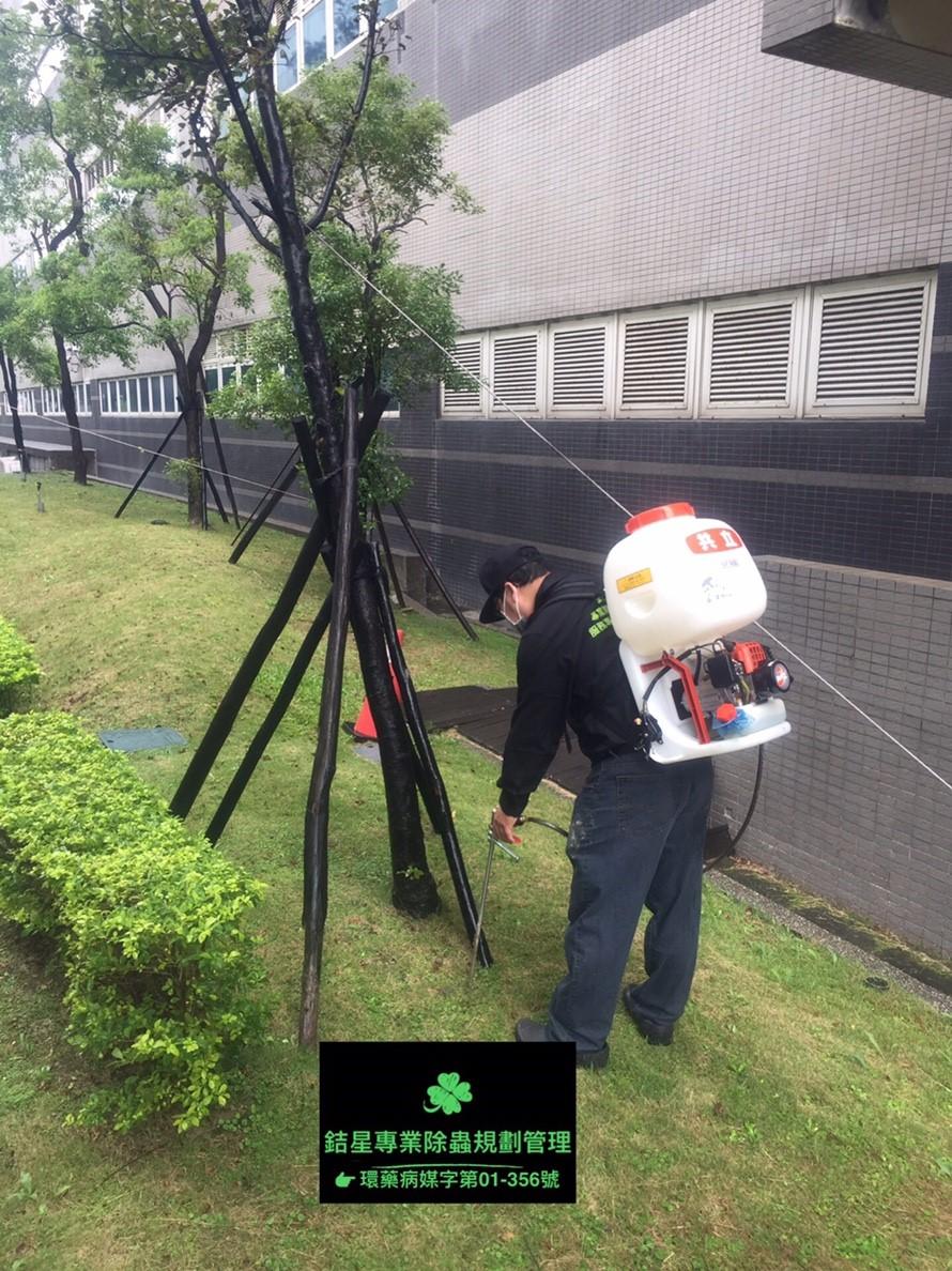 台北蟲害防治