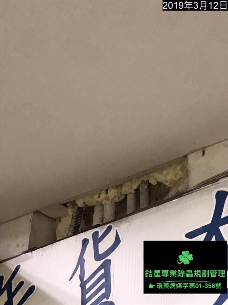 台北滅鼠防治
