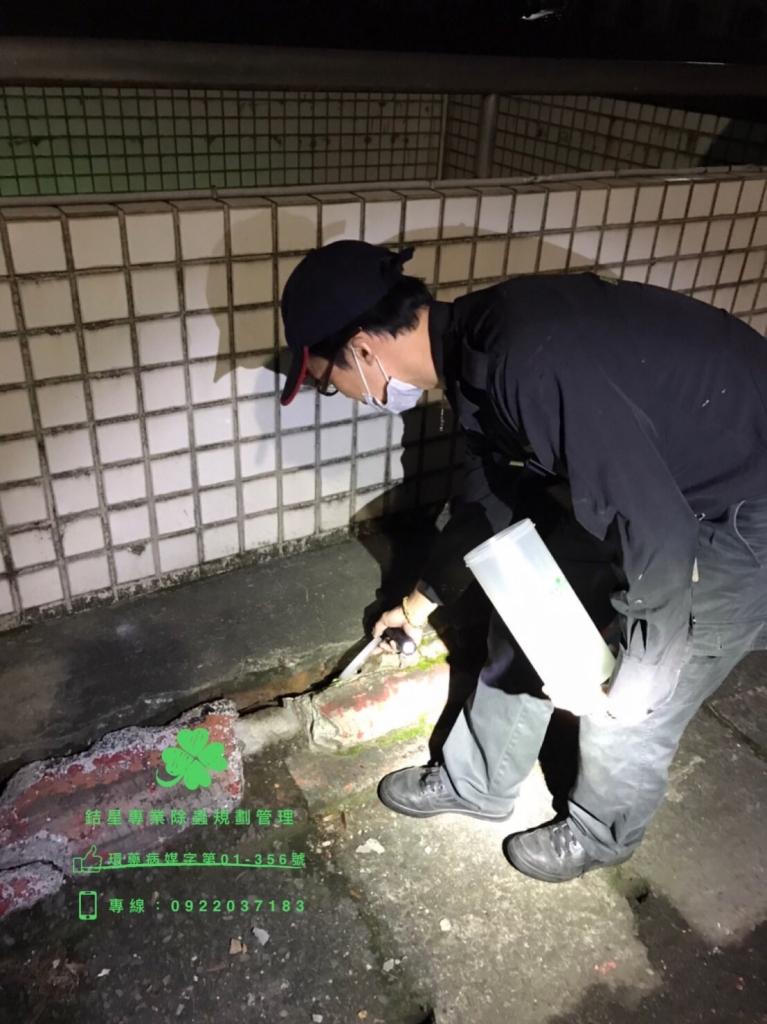 台北餐廳鼠害防治