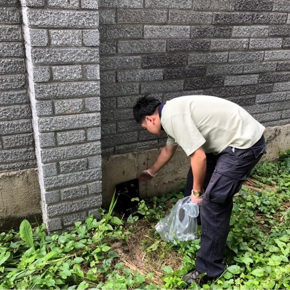 台北除蟲公司