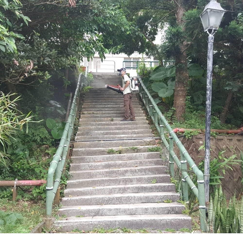台北跳蚤防治