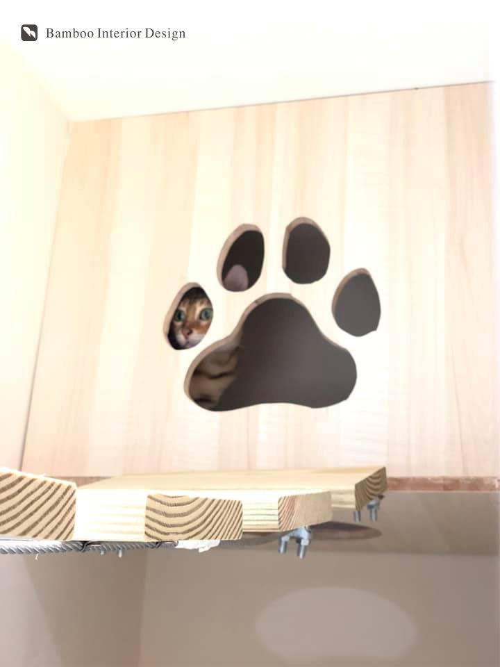 板橋貓旅館