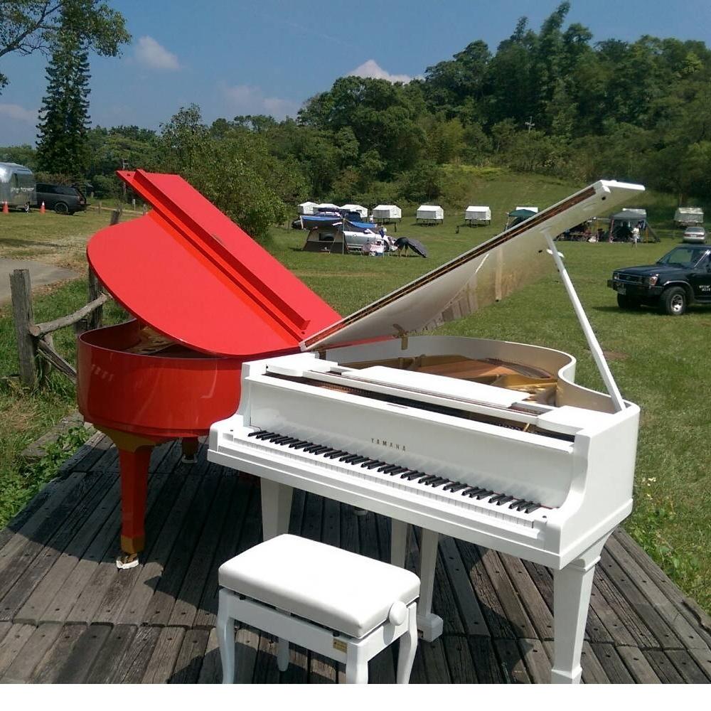 平台三角鋼琴紅白